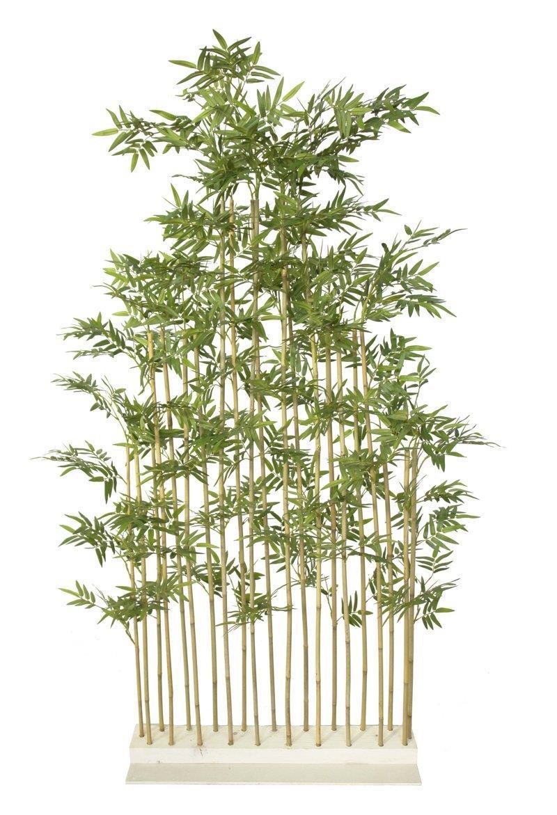 Seto de bambu japones natural 80x40x180cm - Seto de bambu ...