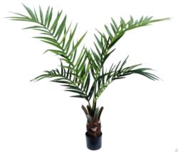 Kentia Palm Care con maceta - 120cm.