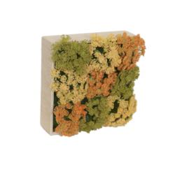 Concobox aquilea base natural - 20x20cm