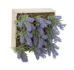 Concobox Lavanda base natural - 20x20cm