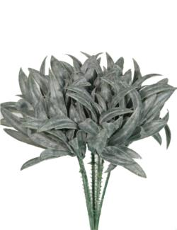 Pick de Cactus gris(6 picks) - 18cm