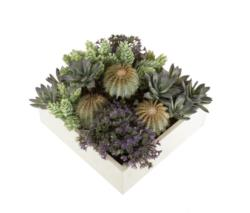 White box crasas África - 20x20x20cm