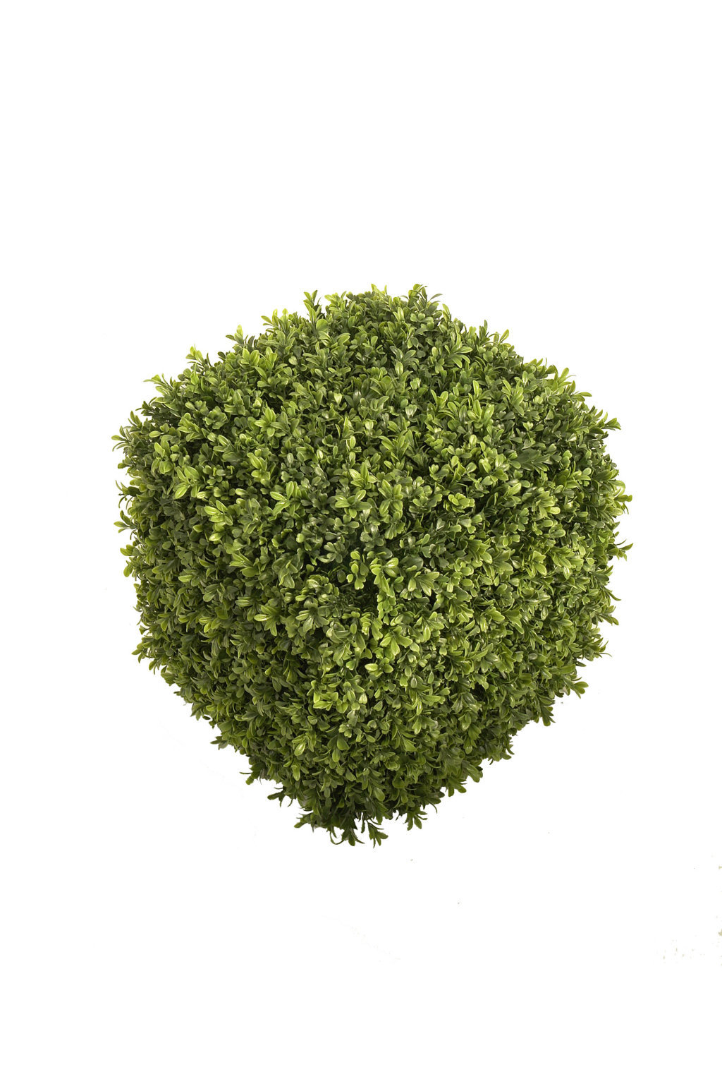 CUADRADO MINI BOXWOOD 40x40x40cm.
