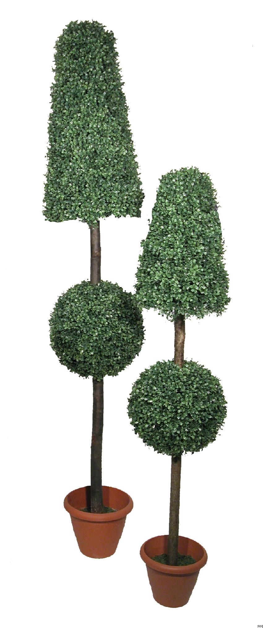 Cono + bola de mini boxwood - 140cm