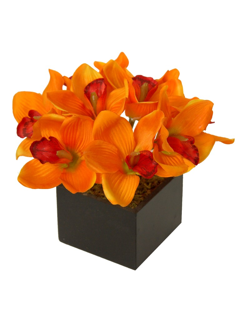 Black box Cimbidium naranja - 11x11x26cm