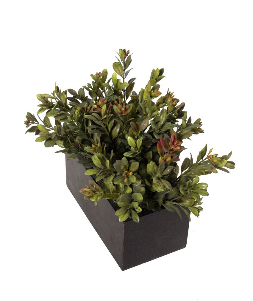 Black box Boxwood otoñal - 15x8x16cm